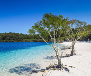Fraser Island Holiday QLD