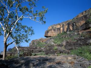 ULTIMATE GUIDE TO THE BEST DARWIN TOURS & DARWIN TO KAKADU TOURS - Kakadu National Park
