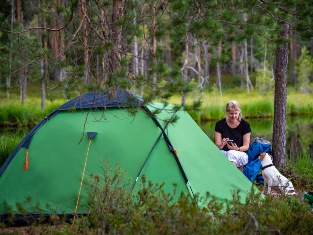 Ultimate Guide To The Best Dog Camping Bed Australia